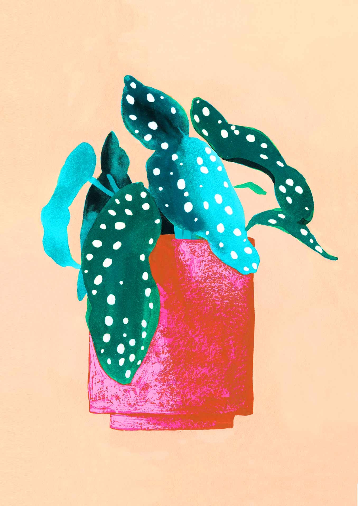 Begonia Card
